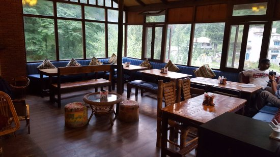 The Lazy Dog Lounge - Himachal